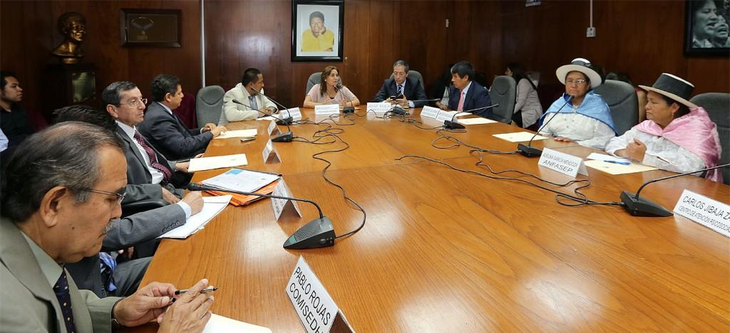expone el Santuario Exposición de la propuesta en el Congreso en la Sala Maria Elena Moyano.